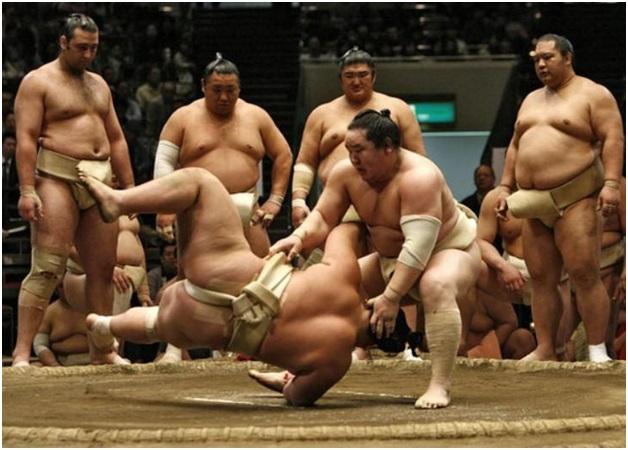 Ставки на сумо