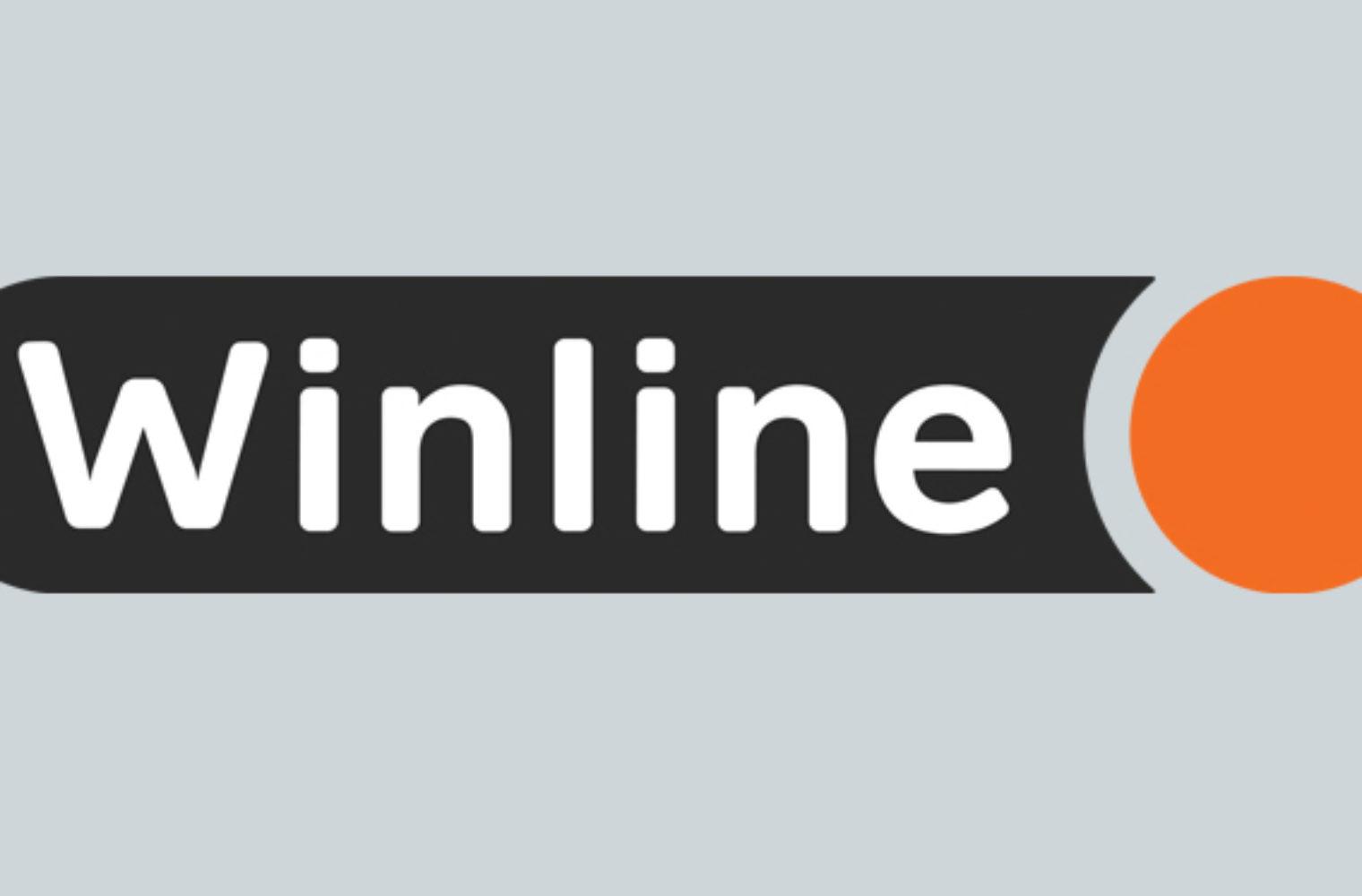 правила игры в Винлайн